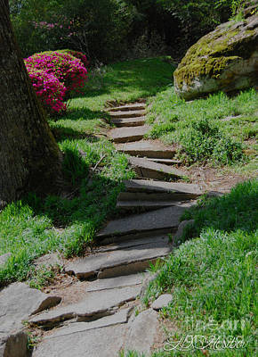 Photograph - Garden Path by Linda Mesibov