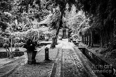 Photograph - Garden Path by M G Whittingham