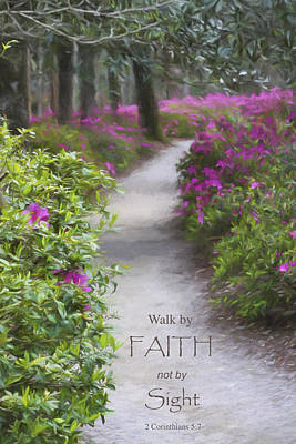 Photograph - Garden Path by Mary Buck