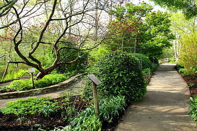 Photograph - Garden Paths by Allen Nice-Webb
