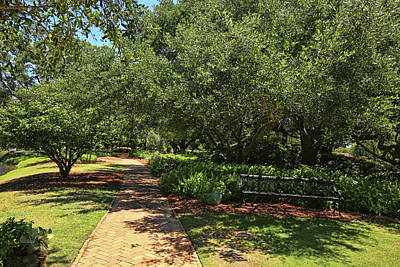 Photograph - Garden Pathway by Judy Vincent