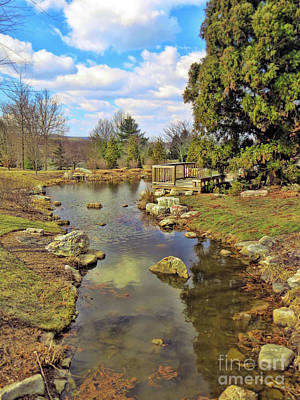 Photograph - Garden Pond In Spring by Kerri Farley