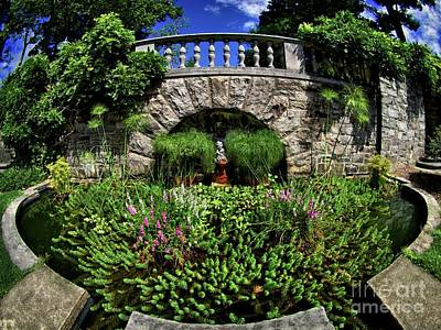 Garden Pond Art Print by Mark Miller