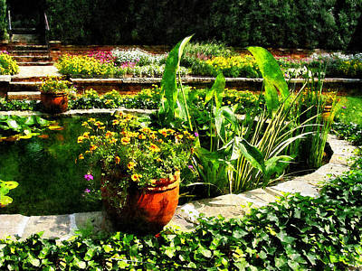 Photograph - Garden Pond by Susan Savad