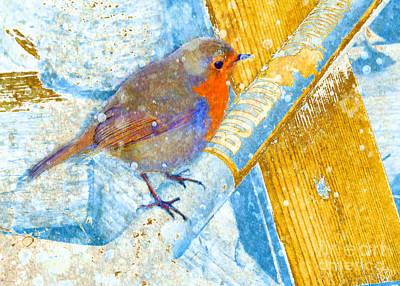 Garden Robin Art Print by LemonArt Photography