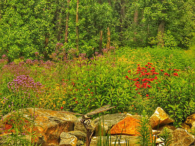 Photograph - Garden Rocks by Kathi Isserman