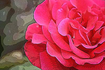 Photograph - Garden Rose by Donna G Smith