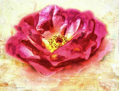 Photograph - Garden Rose by Jean OKeeffe Macro Abundance Art