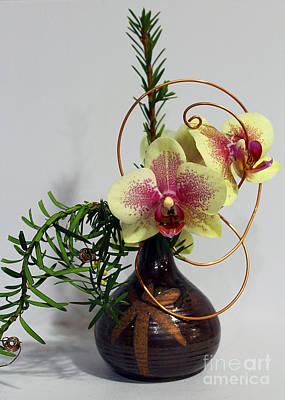Photograph - Garden Show Winner #5 by Nina Silver