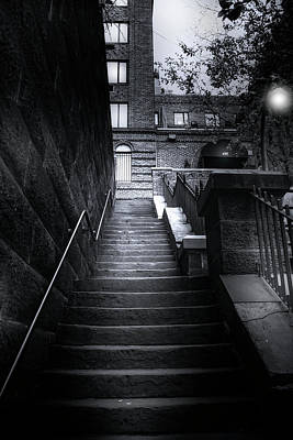 Photograph - Garden Stairs  by Mark Andrew Thomas