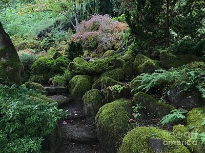 Photograph - Garden Steps by Charlene Mitchell