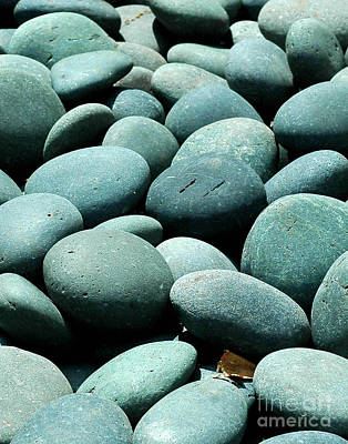 Photograph - Garden Stones by Robert  Suggs