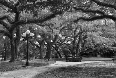 Photograph - Garden Stroll II by Jon Glaser