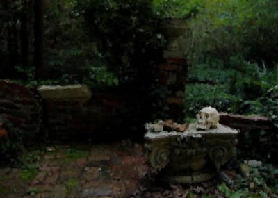 Garden Study With Skull Original