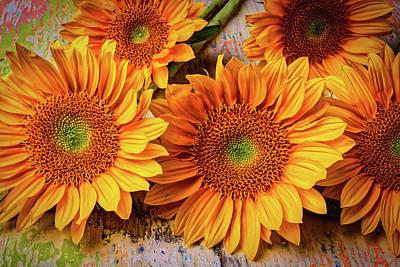 Photograph - Garden Sunflowers by Garry Gay