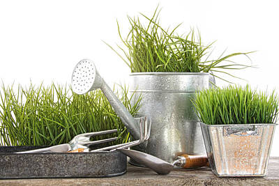 Photograph - Garden Tools And Watering Can With Grass by Sandra Cunningham
