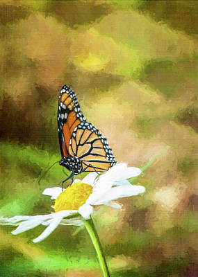 Photograph - Garden Visitor by Cathy Kovarik