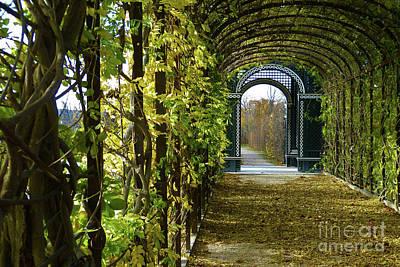 Photograph - Garden Walkway by Marguerita Tan