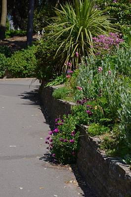Photograph - Garden Wall Bournemouth by Sherri Strikwerda
