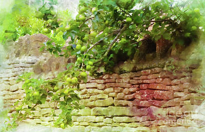 Photograph - Garden Wall by Judi Bagwell