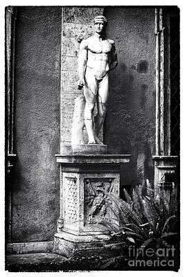 Courtyard Gallery Photograph - Garden Watcher by John Rizzuto