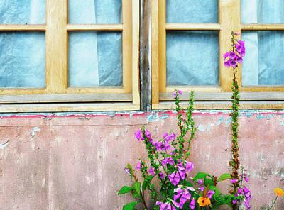Photograph - Garden Window by Claudio Bacinello