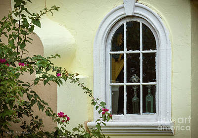 Photograph - Garden Window by Todd Blanchard