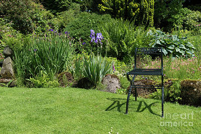 Photograph - Garden With Green Metal Chair As Decoration by Compuinfoto