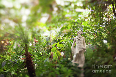 Photograph - Garden Zeus by Heather Green
