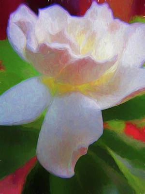 Photograph - Gardenia 1 Painterly by Mary Bedy