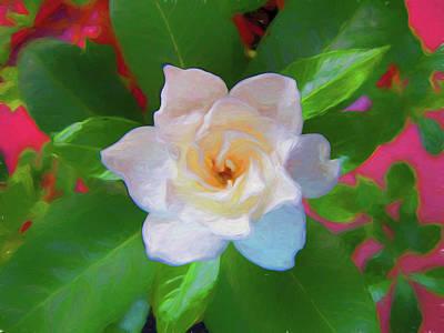 Photograph - Gardenia 2 Painterly by Mary Bedy