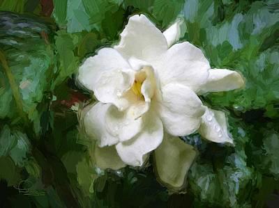 Gardenia Blossom Art Print