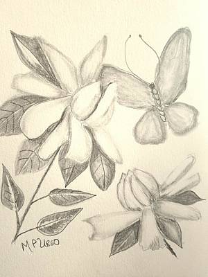Drawing - Gardenia Drawing 1 by Maria Urso