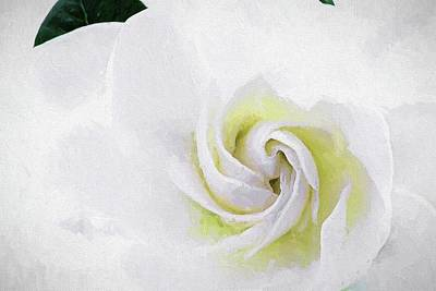 Digital Art - Gardenia Swirl  by JC Findley
