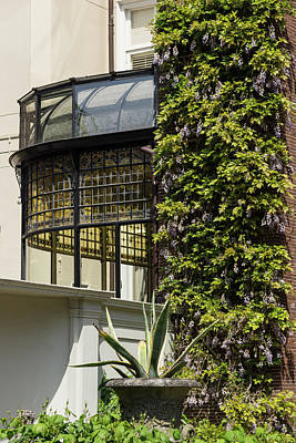 Gardening Delights - Wisteria Aloe Vera And A Stained Glass Canopy - Left Art Print
