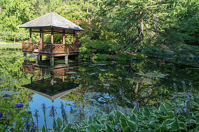 Photograph - Japanese Garden Pond - View 4 by Marilyn Wilson