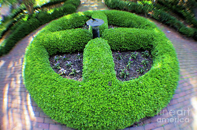 Photograph - Gardens At Carlyle House by John S
