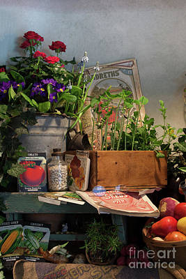 Photograph - Garden's Bounty by Nicki McManus