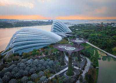 Photograph - Gardens By The Bay by Evgeny Vasenev