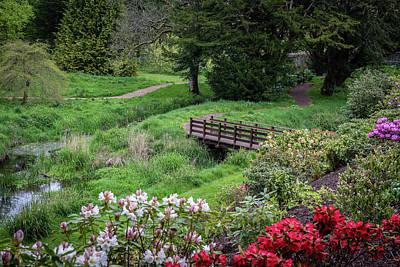 Gardens Of Blarney Castle - Blarney Ireland Art Print