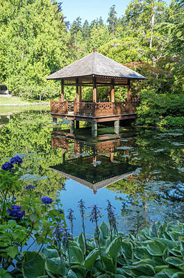 Photograph - Japanese Garden Pond - View 5 by Marilyn Wilson