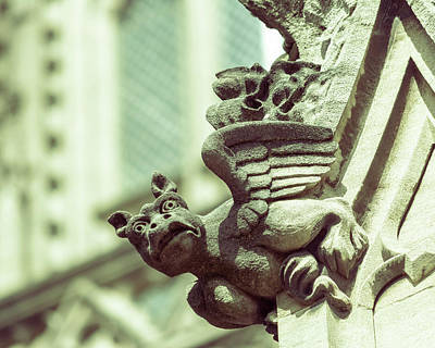 Photograph - Gargoyle D On St Mary Redcliffe Church Bristol by Jacek Wojnarowski