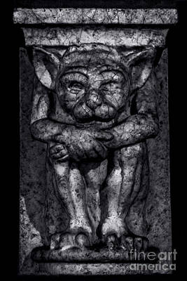 Photograph - Gargoyle Portrait 1 by James Aiken