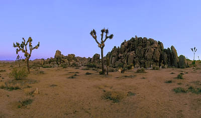 Photograph - Gargoyle Rock Area Pano View by Paul Breitkreuz