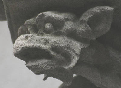 Photograph - Gargoyle With Gills by Christopher Kirby