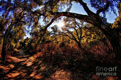 Photograph - Garland Ranch Regional Park by Blake Richards