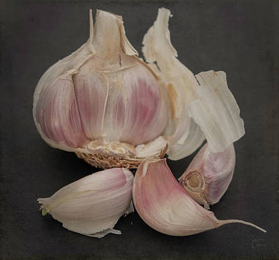 Photograph - Garlic-7640 by Teresa Wilson