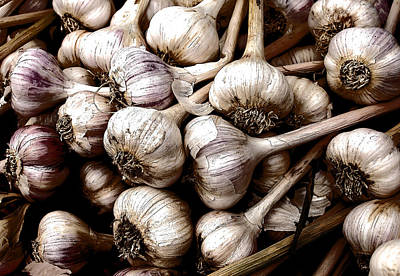 Photograph - Garlic Bulbs 2 by David Pantuso