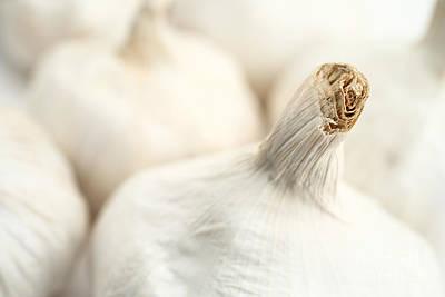 Photograph - Garlic Bulbs by Gaspar Avila
