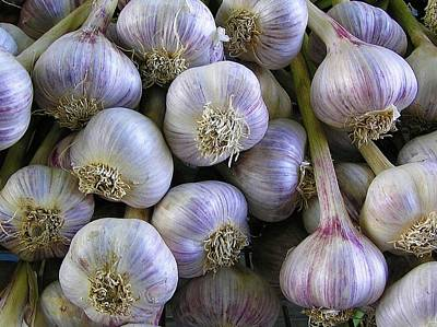 Garlic Bulbs Art Print by Jen White